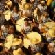 Veja imagens da Noite dos Tambores Silenciosos em Recife